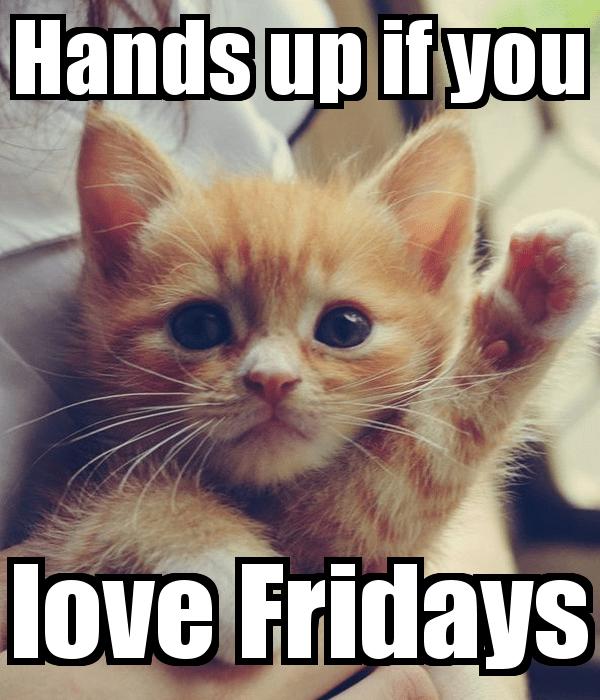 TGIF FridayFunnies mamaflasch
