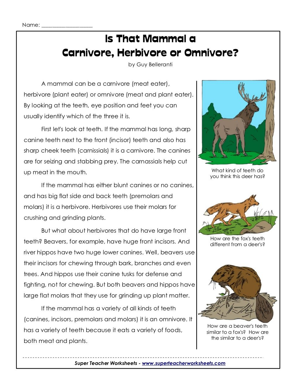 Cycle 2 Week 2 Science Carnivores Herbivores Or Omnivore