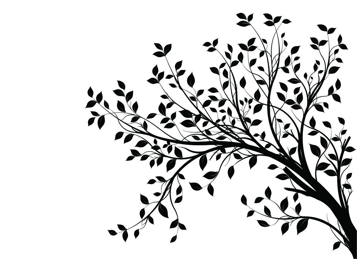 15 Awesome Branch Silhouette Images
