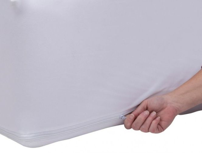 Twin Xl Mattress Protector Bed Bugs