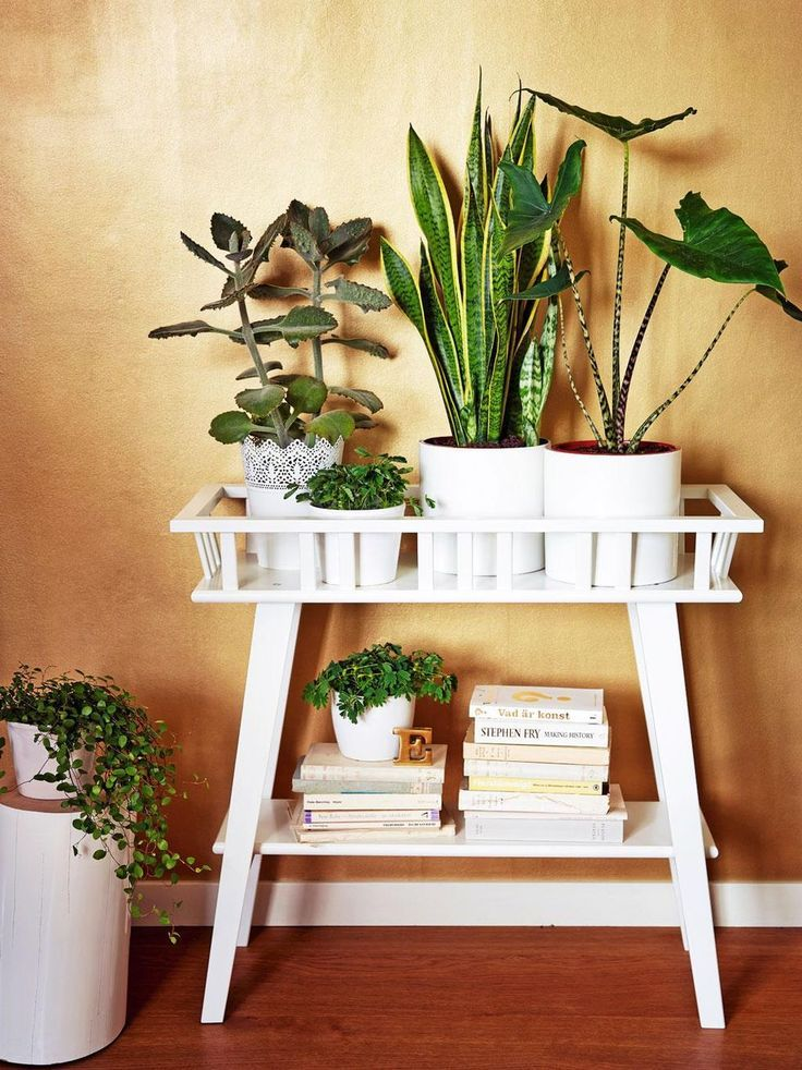 36+ DIY Plant Stand Ideas for Indoor and Outdoor