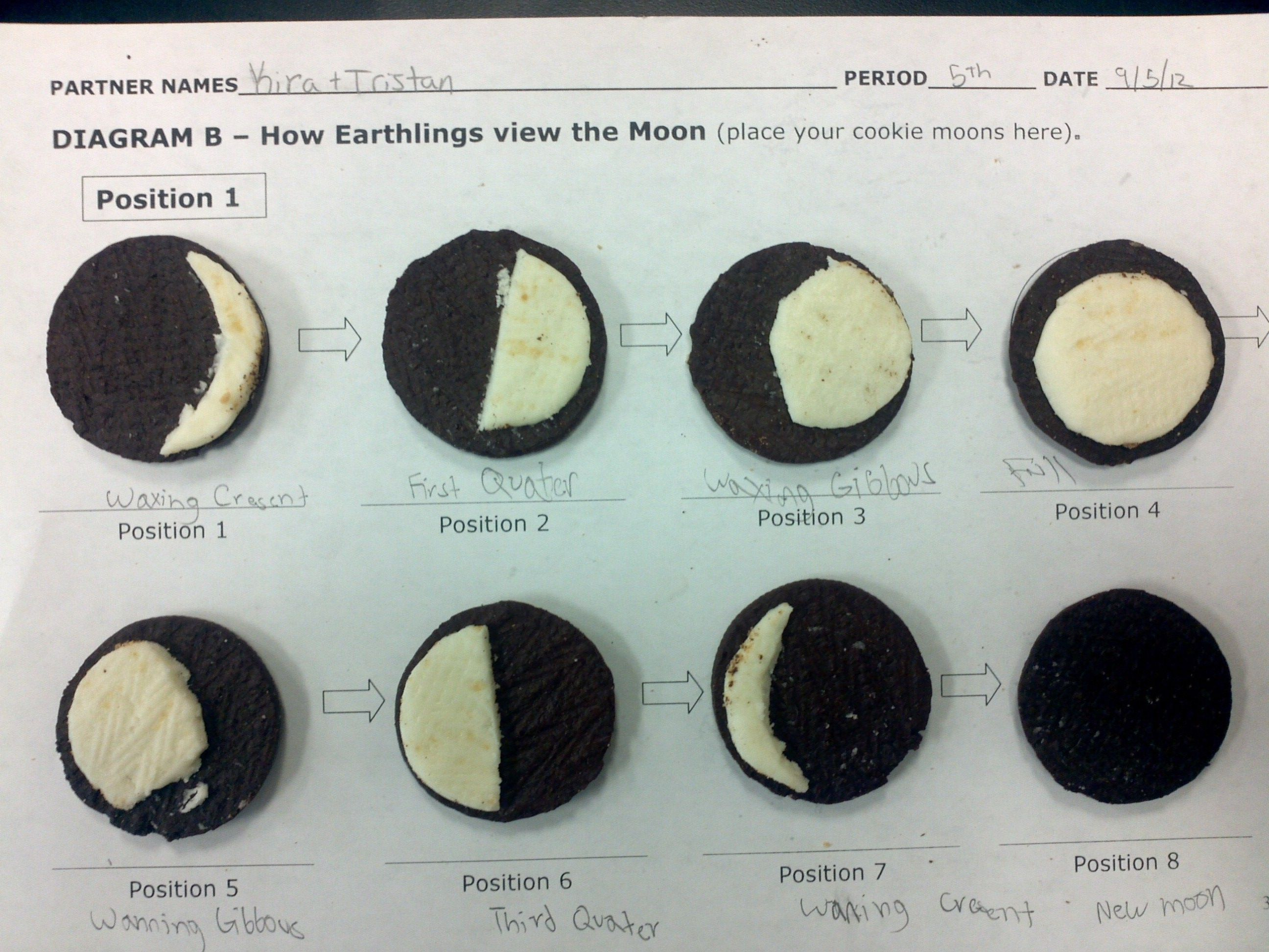 3rd Grade Moon Phases Worksheet