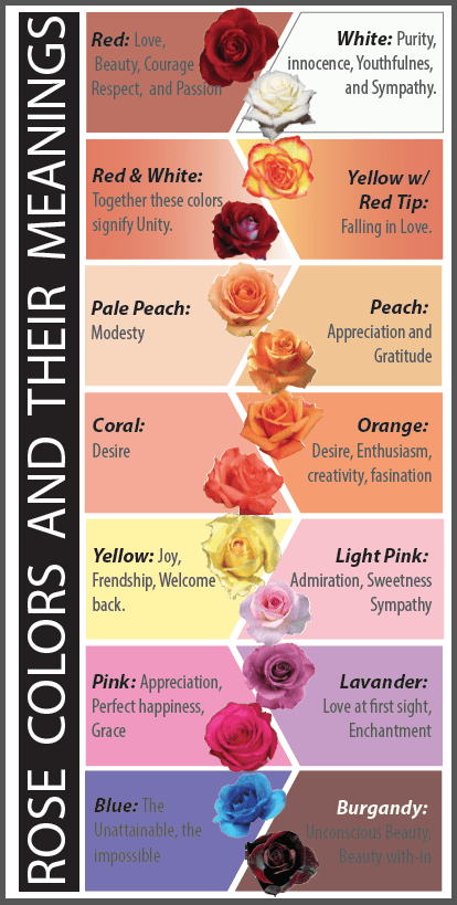 Rose Colors and their Meanings. You wouldn't want to give