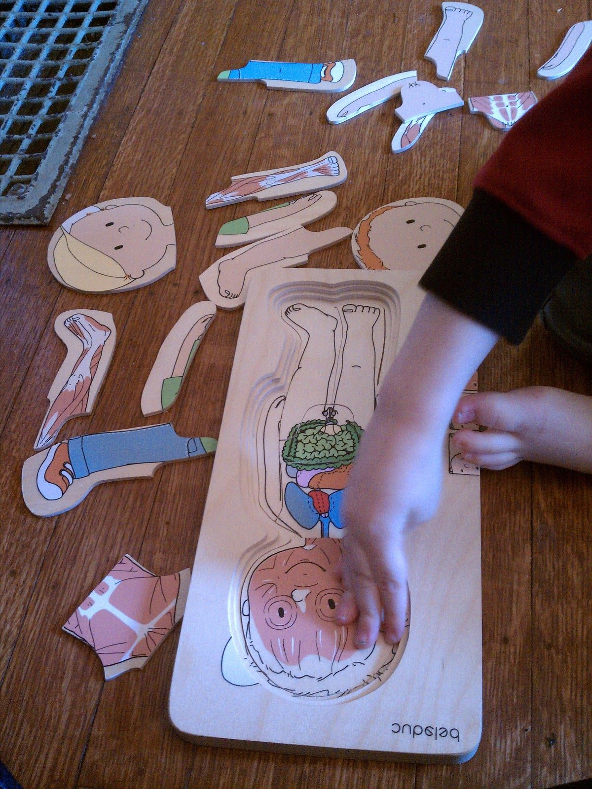 Wee Wonderings Preschool Theme Human Body Birthday Books