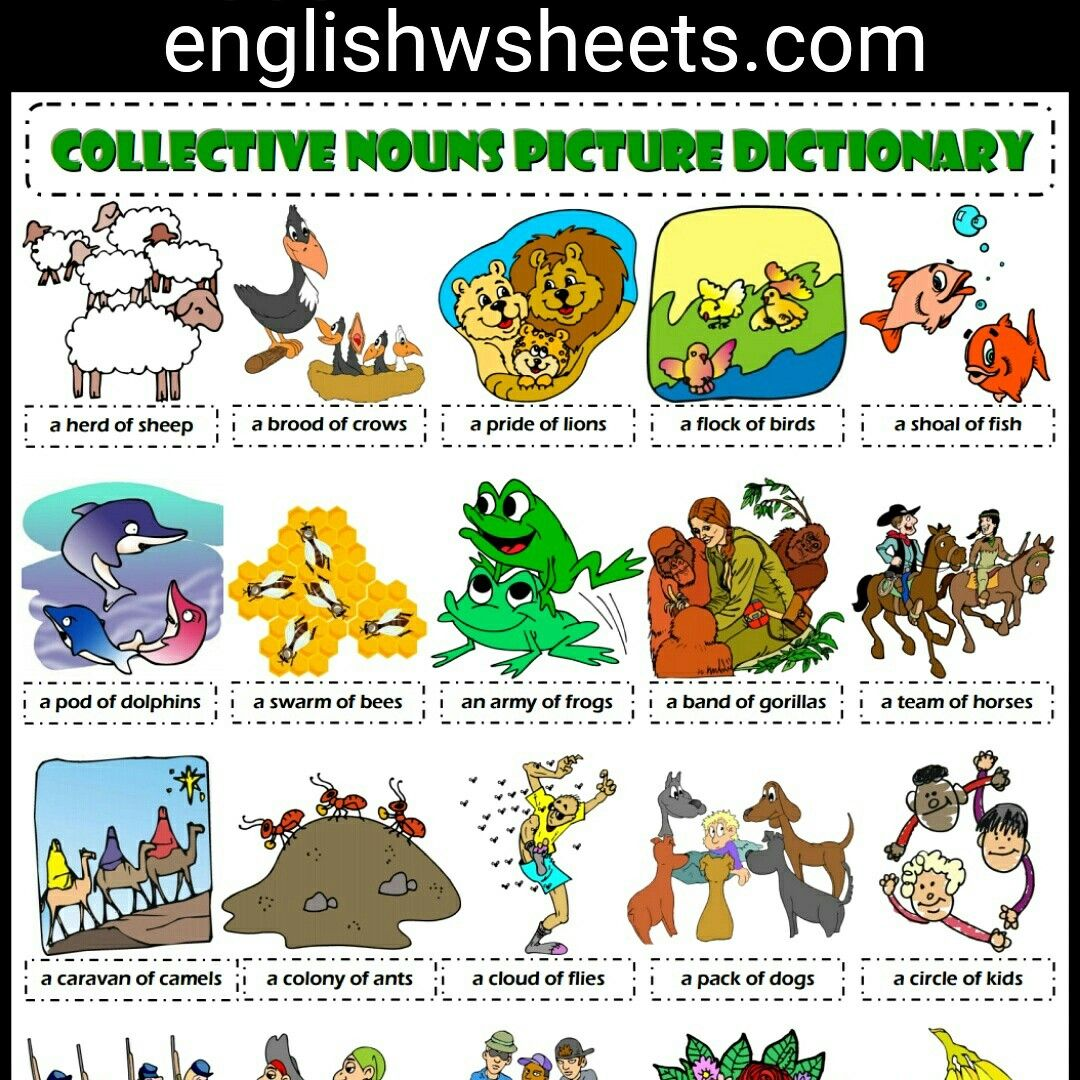 Collective Nouns Esl Printable Picture Dictionary For Kids