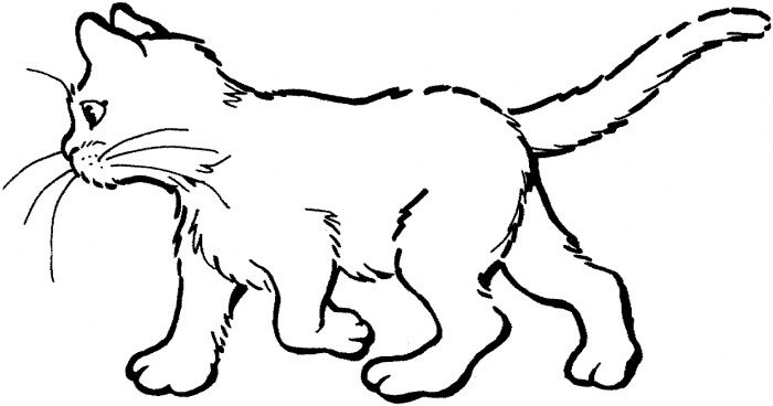 1000 images about favorite cat colouring pages on pinterest