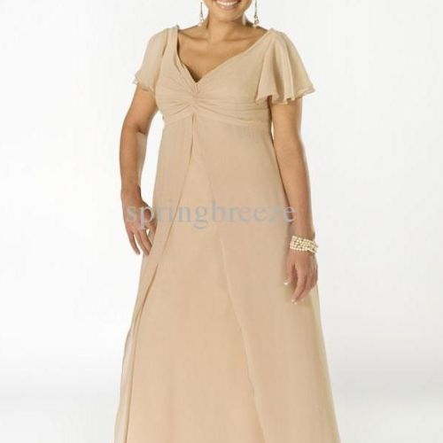 Plus Size Mother of the Bride Dresses with Sleeves | Mother of the