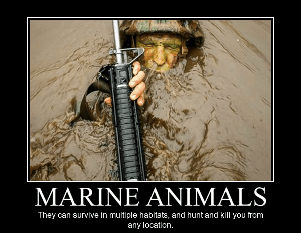 The 13 funniest military memes of the week Bro, Marines