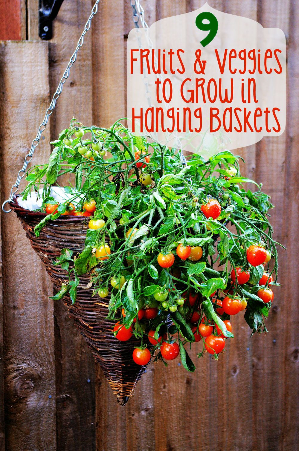 9 Fruits And Veggies To Grow In Hanging Baskets Learn