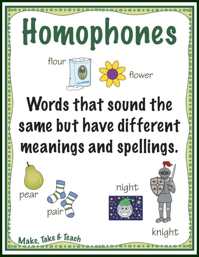 Teaching Homophones (Make, Take & Teach)