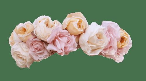 Pink Flower Crown Tumblr Transparents Pinterest
