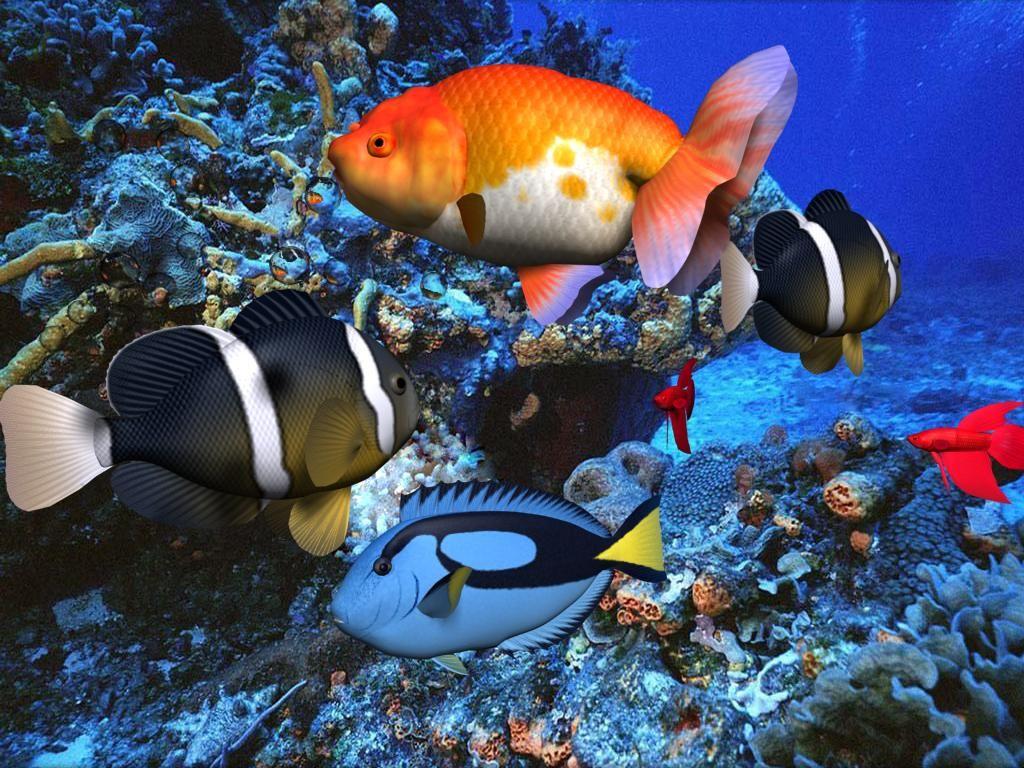 3D Screensavers Free 3D Aqua Screensaver 2.86 free