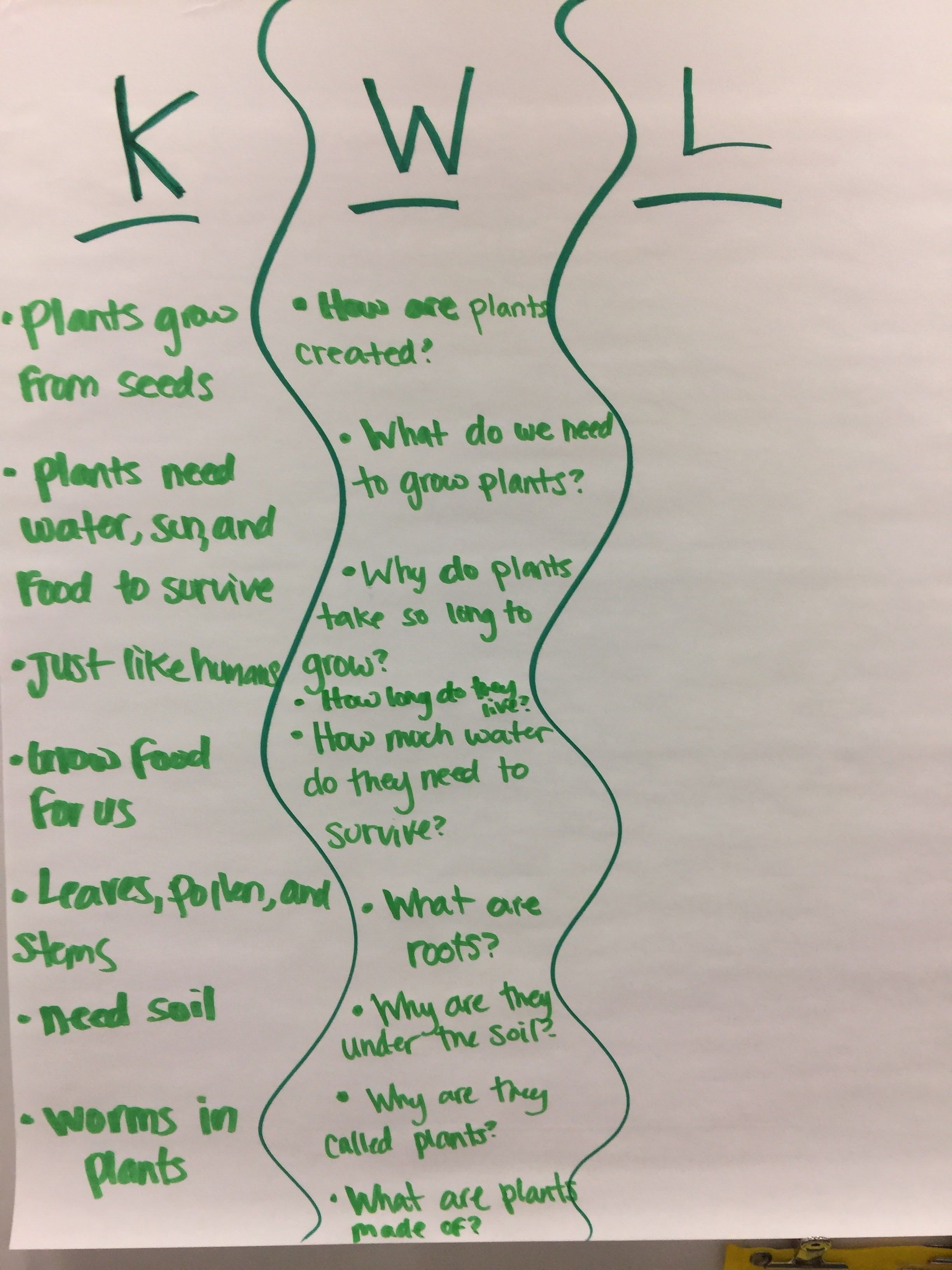 Plants Kwl Anchor Chart