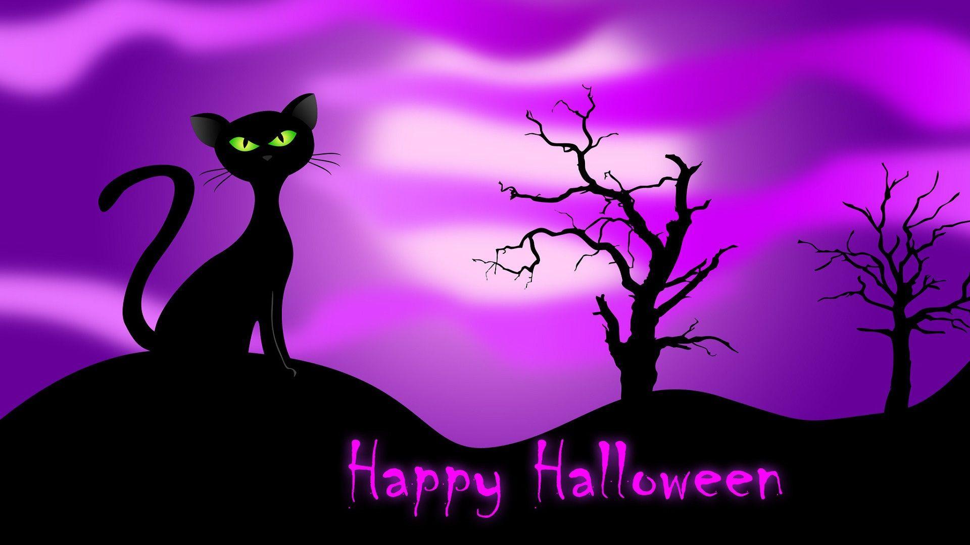 Halloween cats and kittens happyhalloweencathalloween