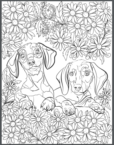 1000 images about dachshund coloring pages on pinterest