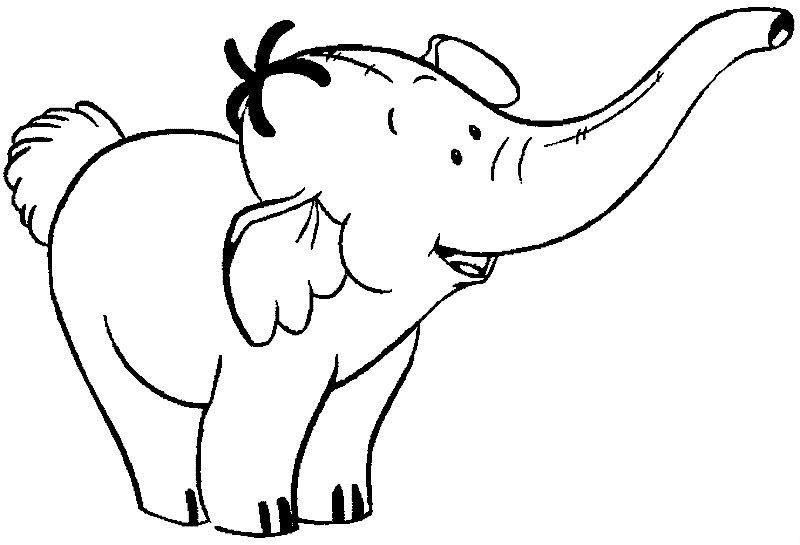 1000 images about elephant on pinterest coloring pages baby