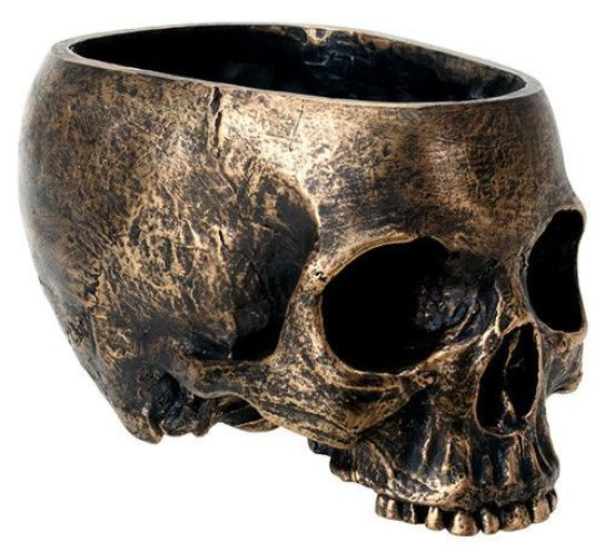 A bronze resin material gives this skull planter its unique antique finish. Fans of Gothic décor will appreciate this decorative oddity. Make your garden alive with this beautiful Skull Planter – make