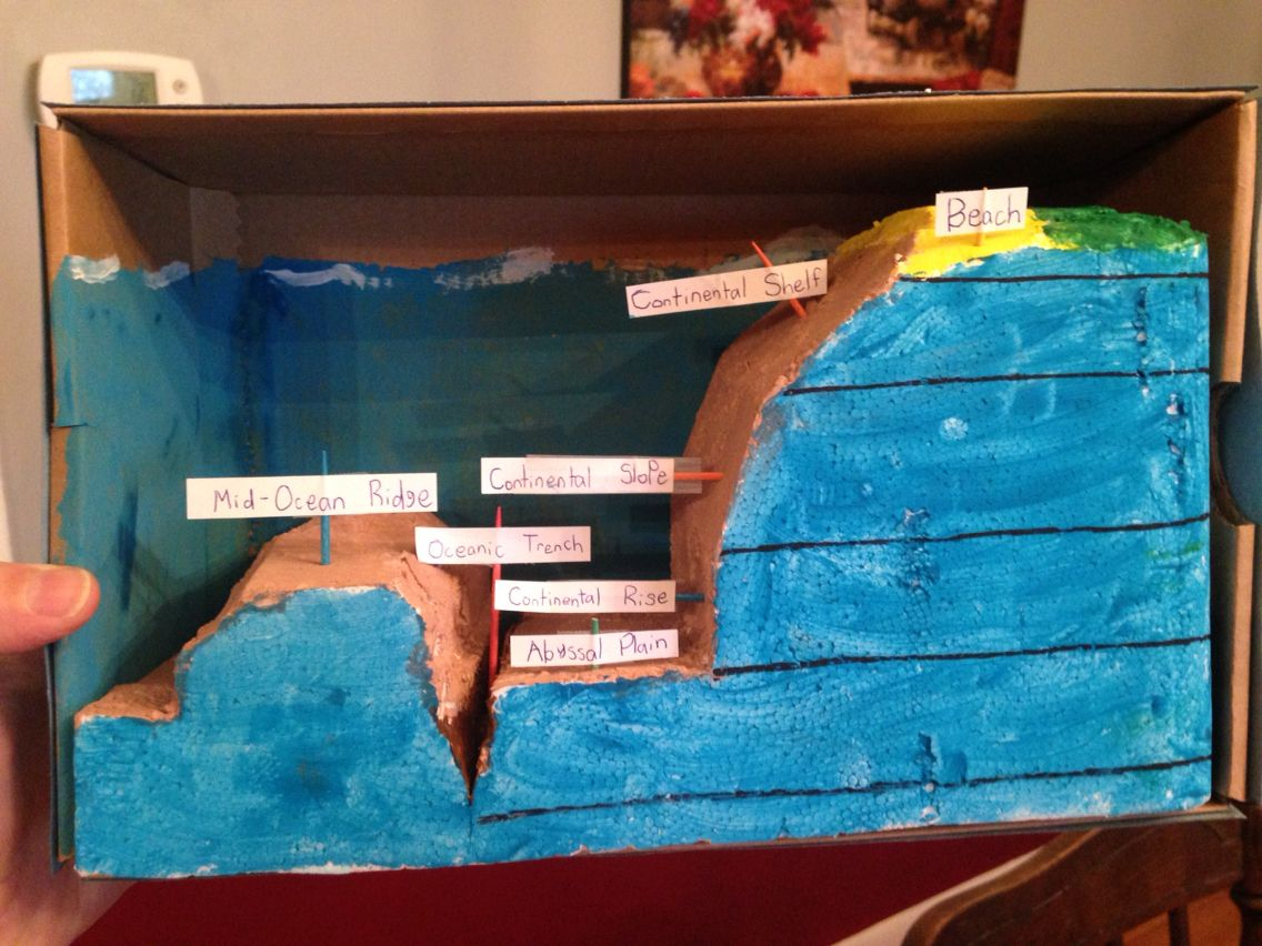 Ocean Floor Diorama Carved From Extra Styrofoam Out Of A