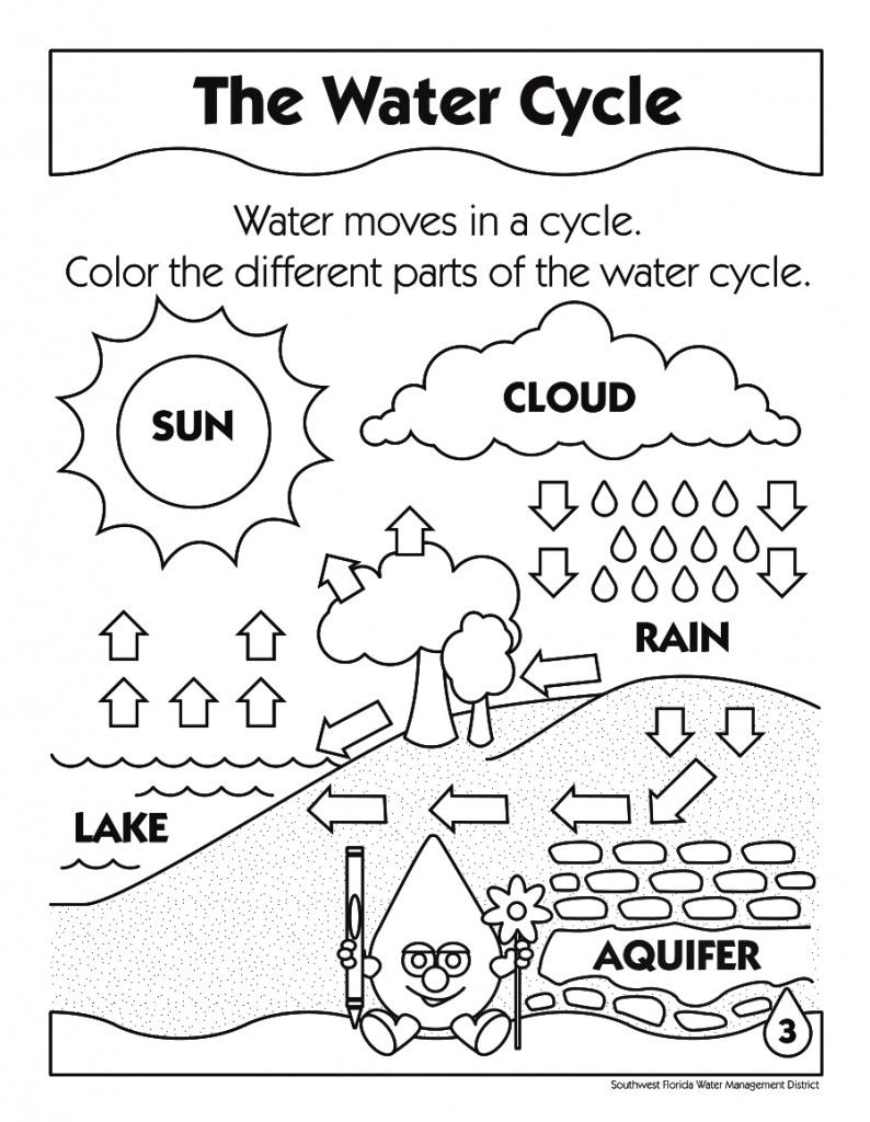 Printable Water Cycle Diagram Coloring Pages to Print