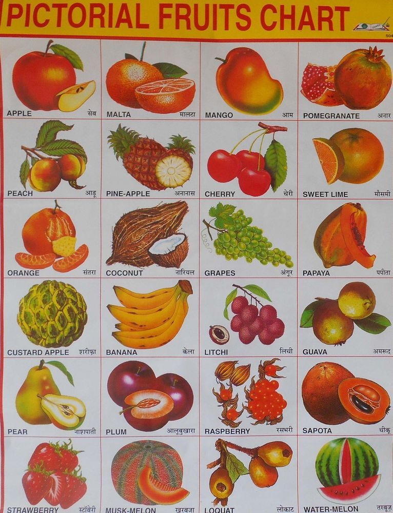 School Chart Print of Pictorial Fruits Chart in Hindi