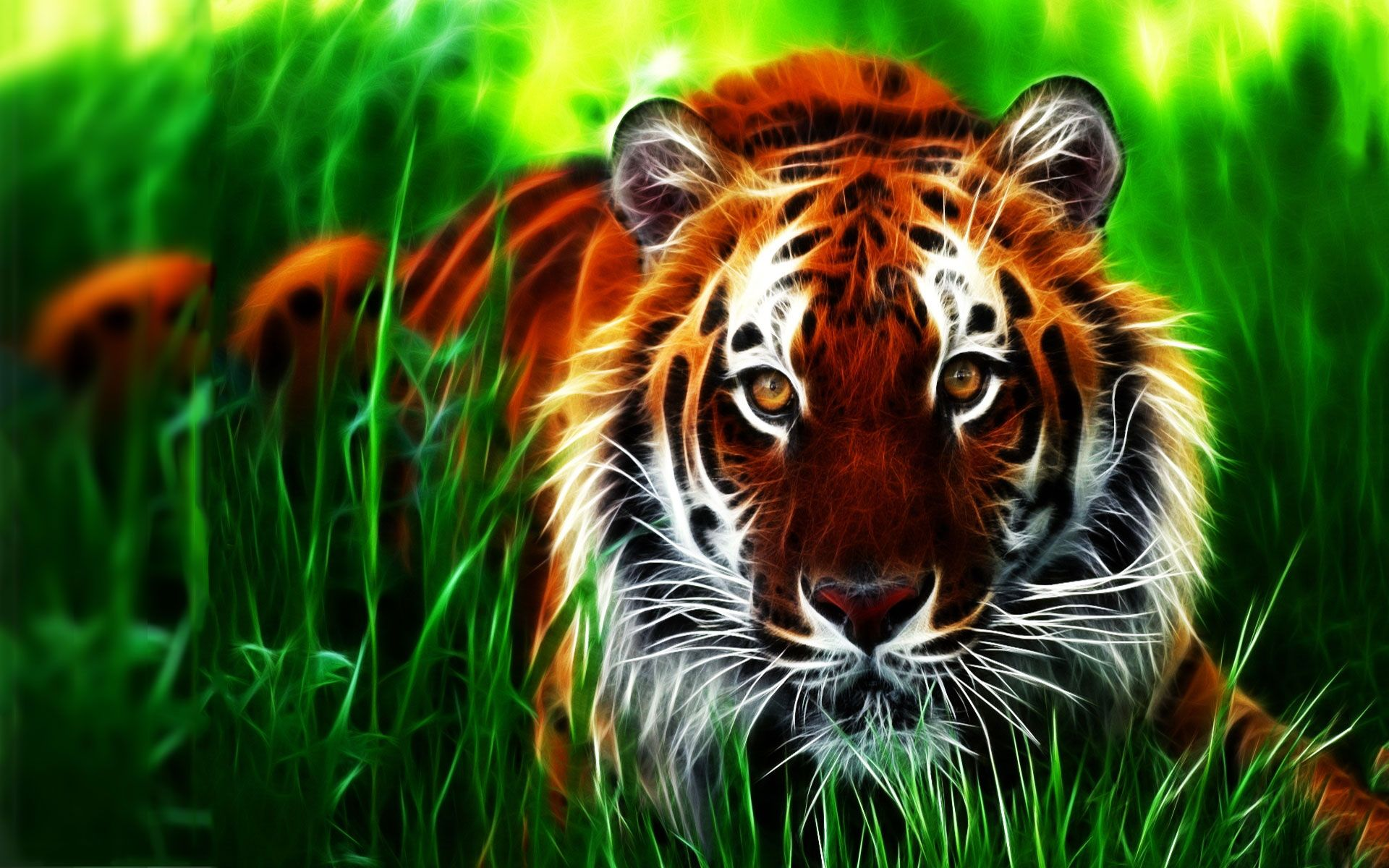Best 3D Animal Wallpaper HD Animated Animal Wallpaper