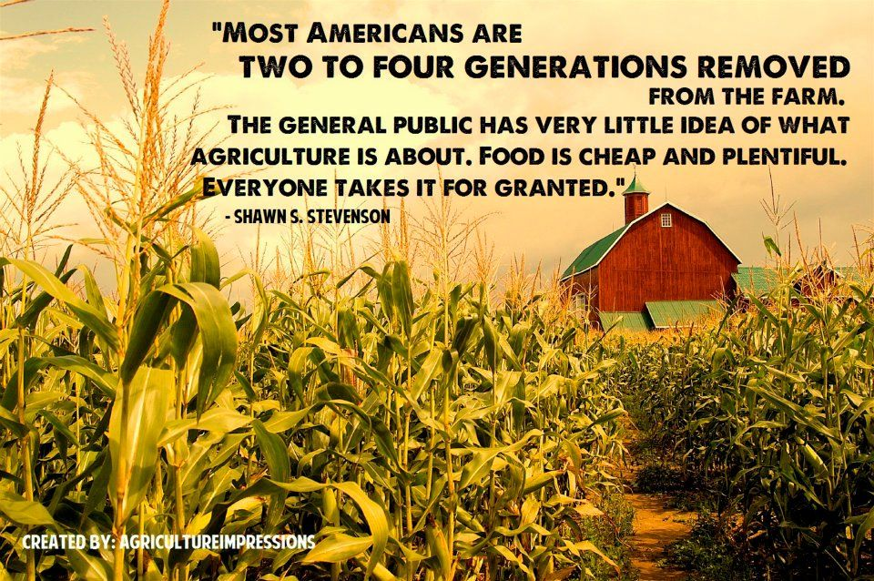 Most Americans are two to four generations removed from