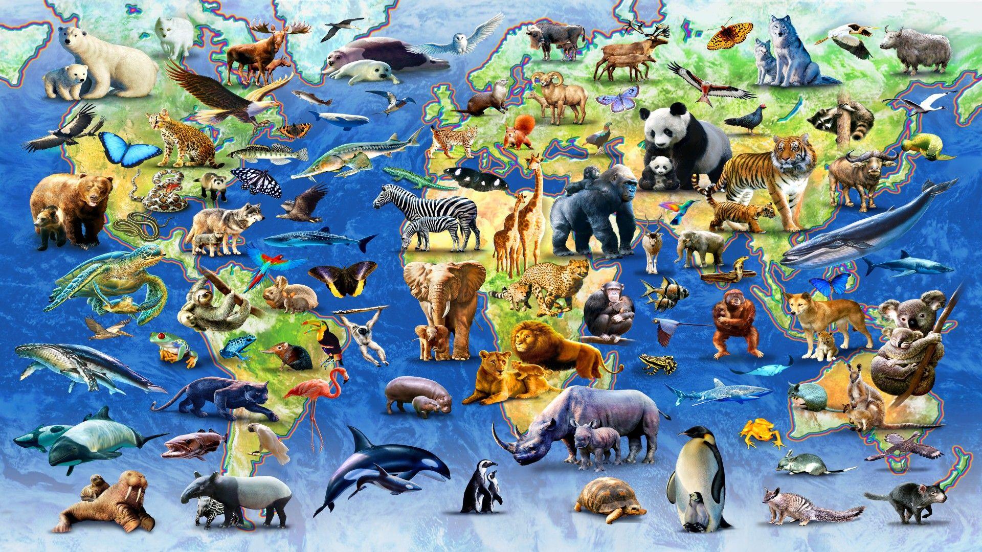 HD jpeg Map of endangered species Teaching Topic
