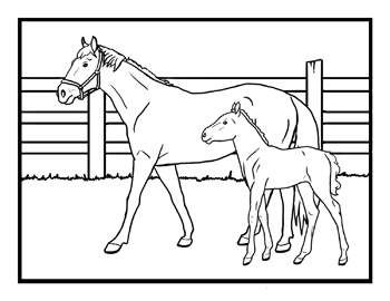 1000 images about kids corral on pinterest printable coloring