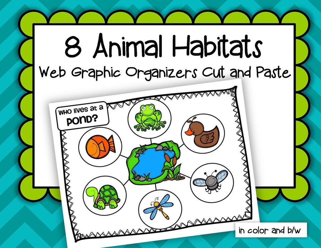 Animals Habitats 8 Web Graphic Organizers Cut And Paste