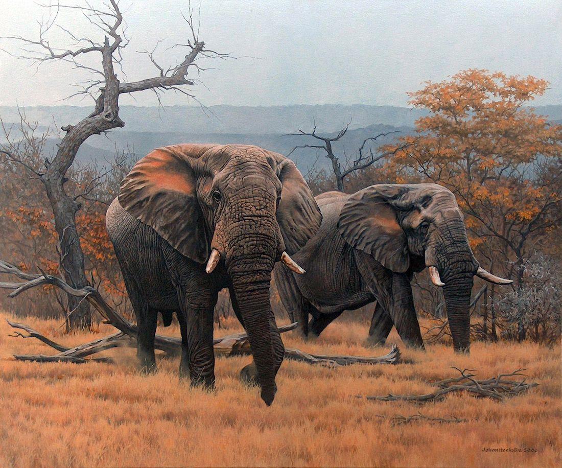 Johan Hoekstra Wildlife Art Wildlife Art Pinterest