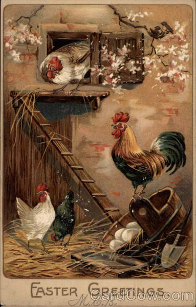 Rooster And Chickens In A Henhouse Eggs Amp Poultry