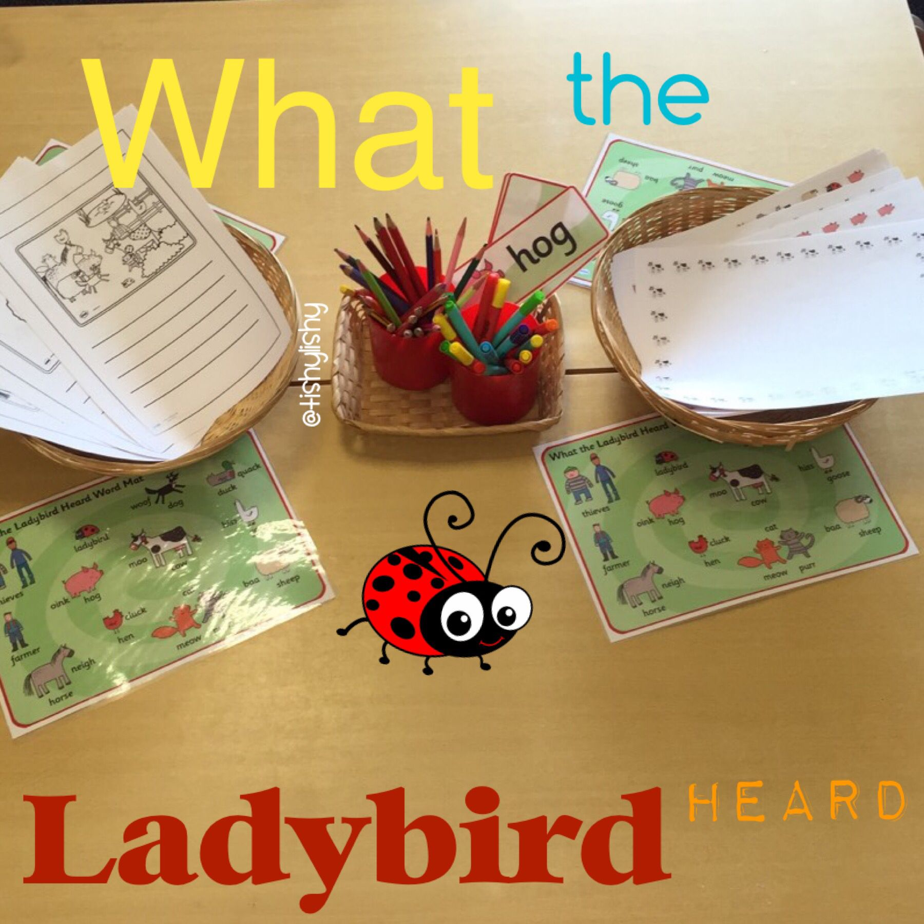 What The Ladybird Heard Writing Invitation