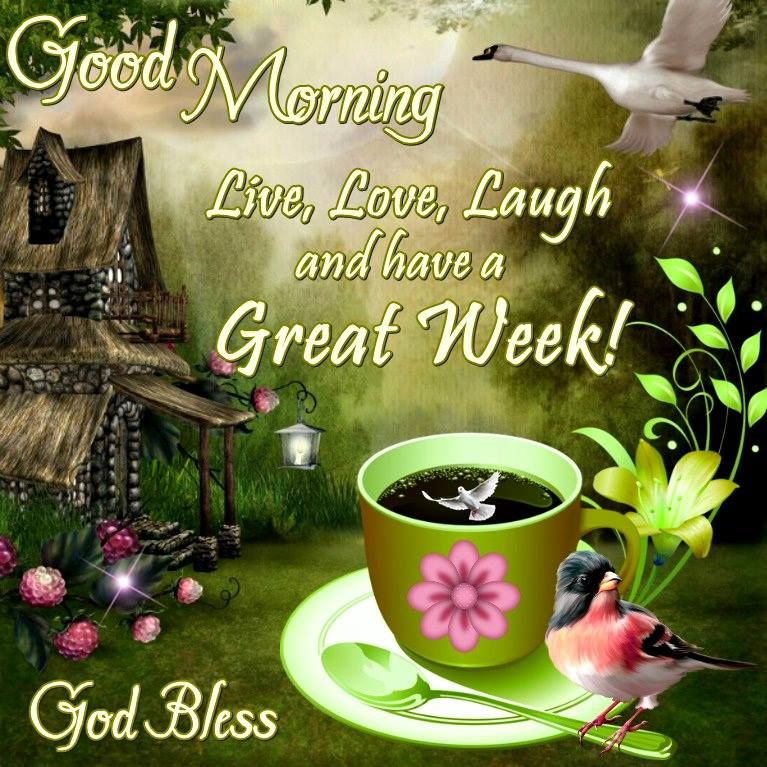 Good Morning, Happy Monday. I pray that you have a safe