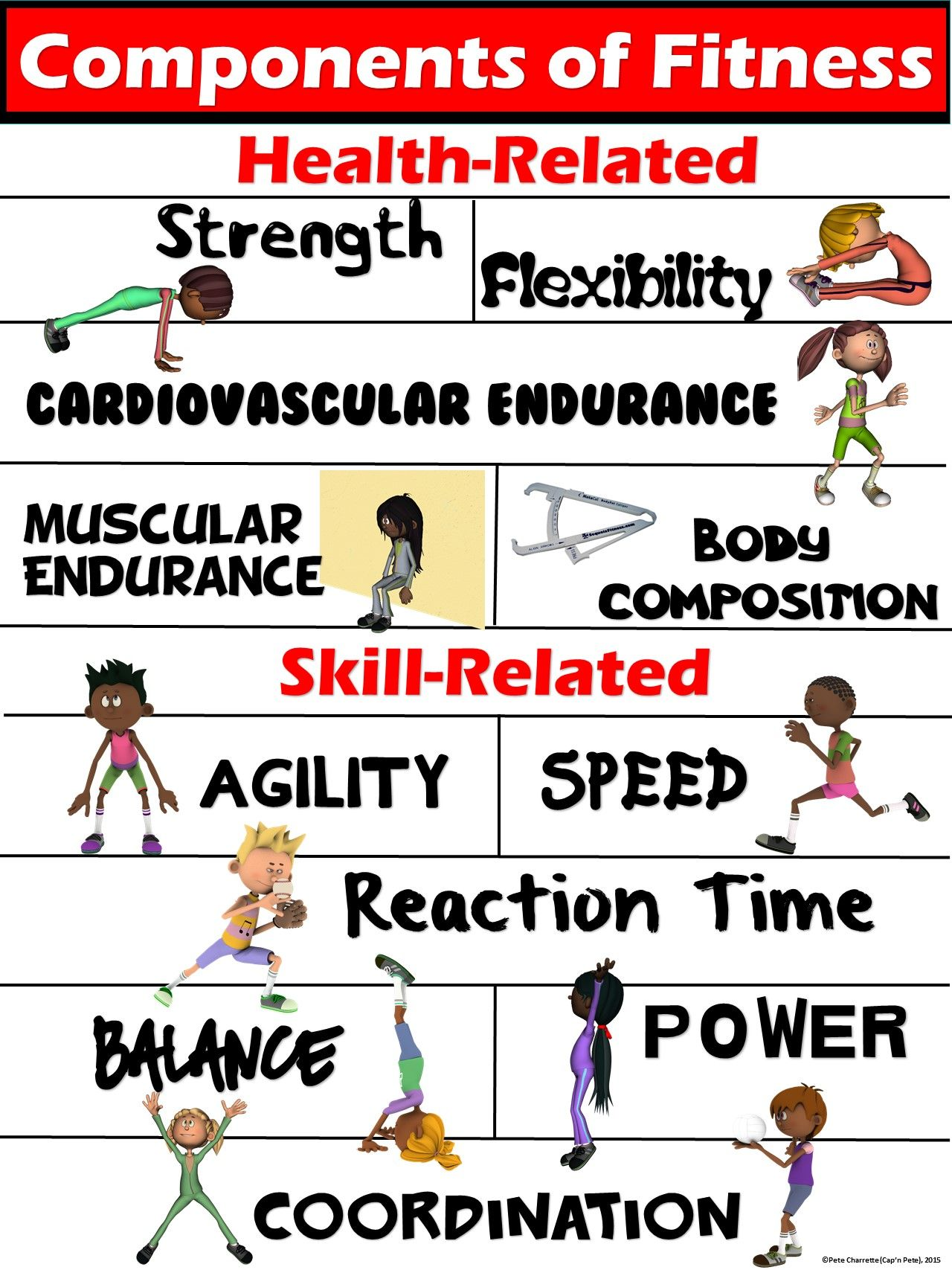PE Poster Components of Fitness Health and SkillRelated