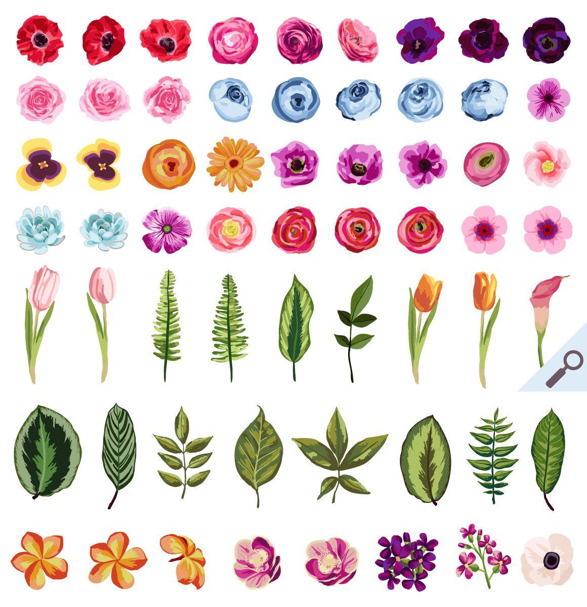 DIY Flower Pack Vol.1 Illustrations 2. Cute Watercolor