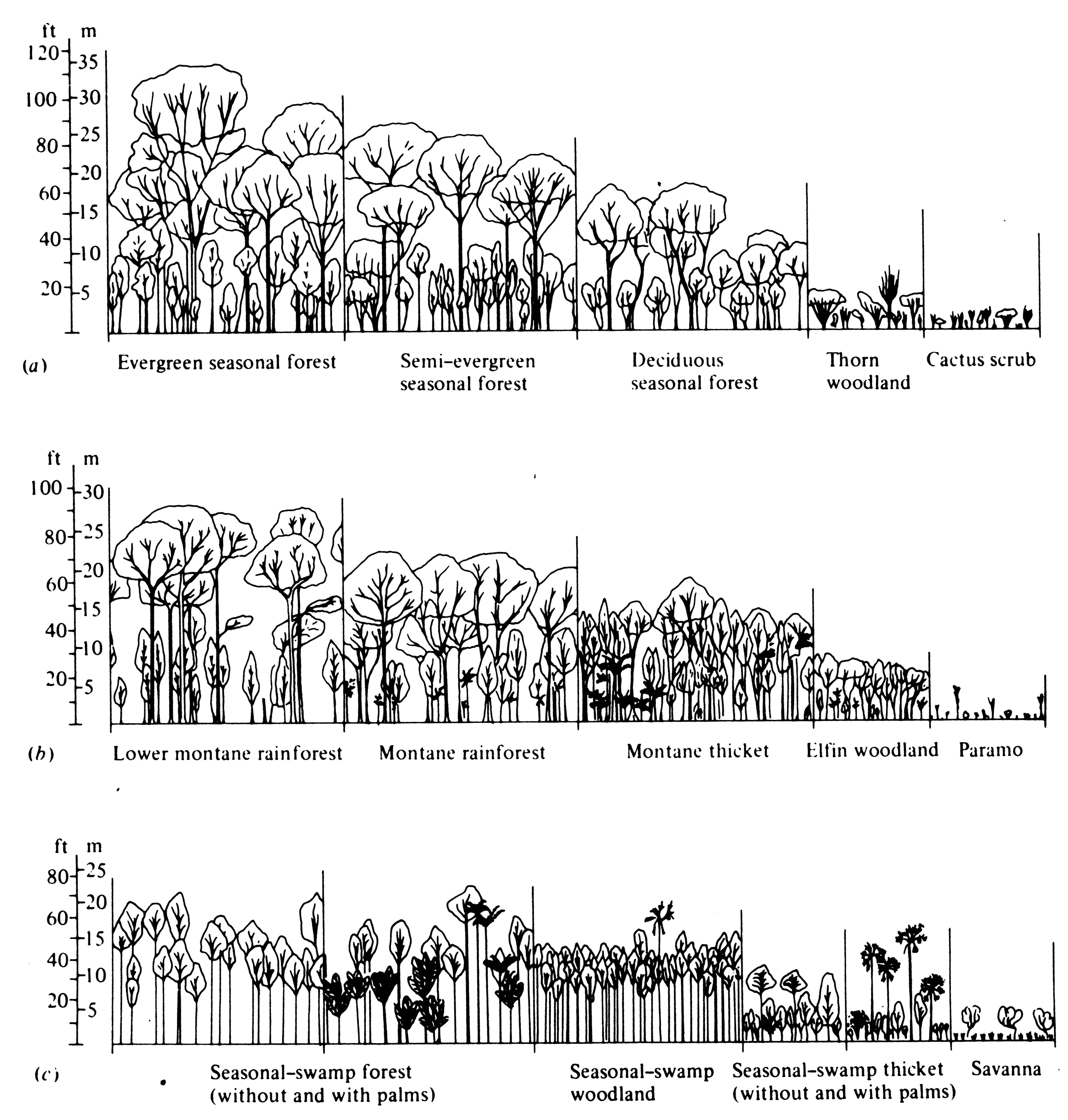 4 Climate And Vegetation