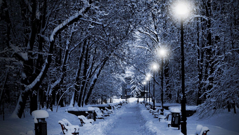 Winter Night Wallpapers High Quality Sdeerwallpaper HD