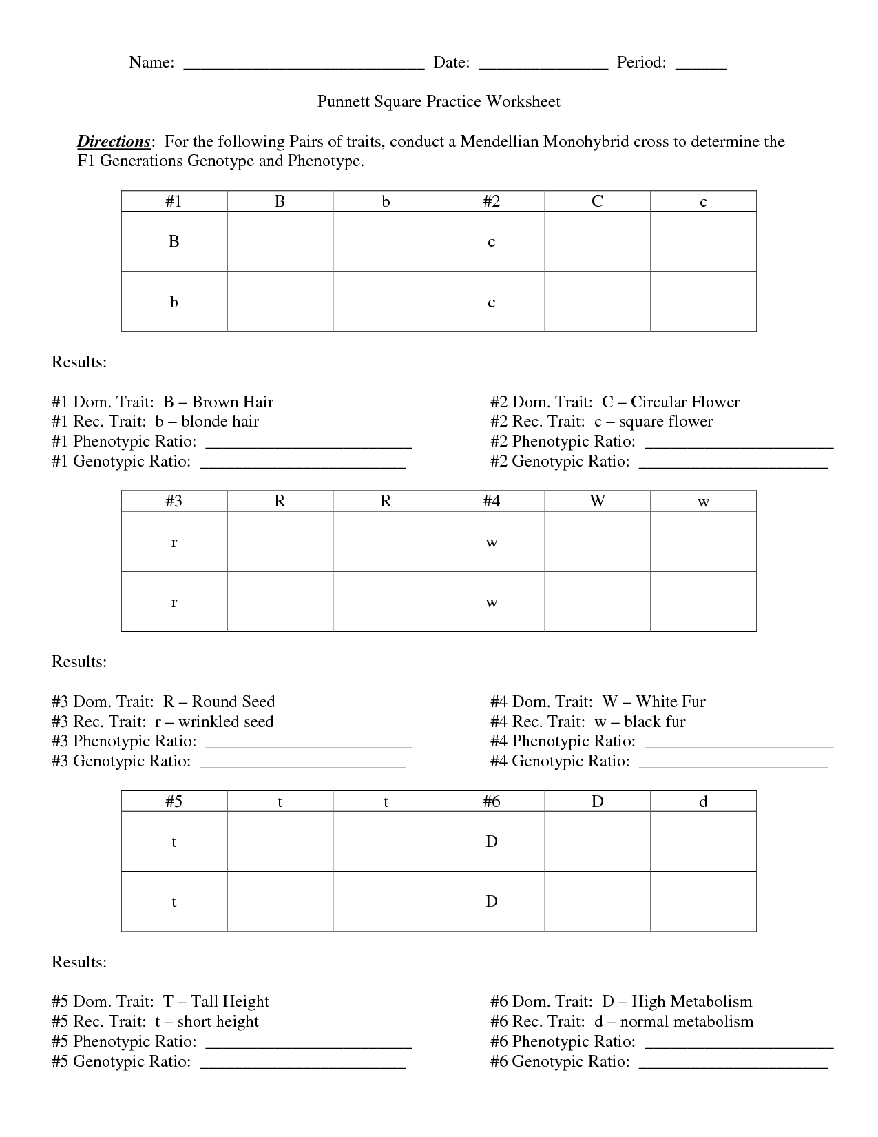 Worksheet Punnett Square Worksheet 1 Answer Key