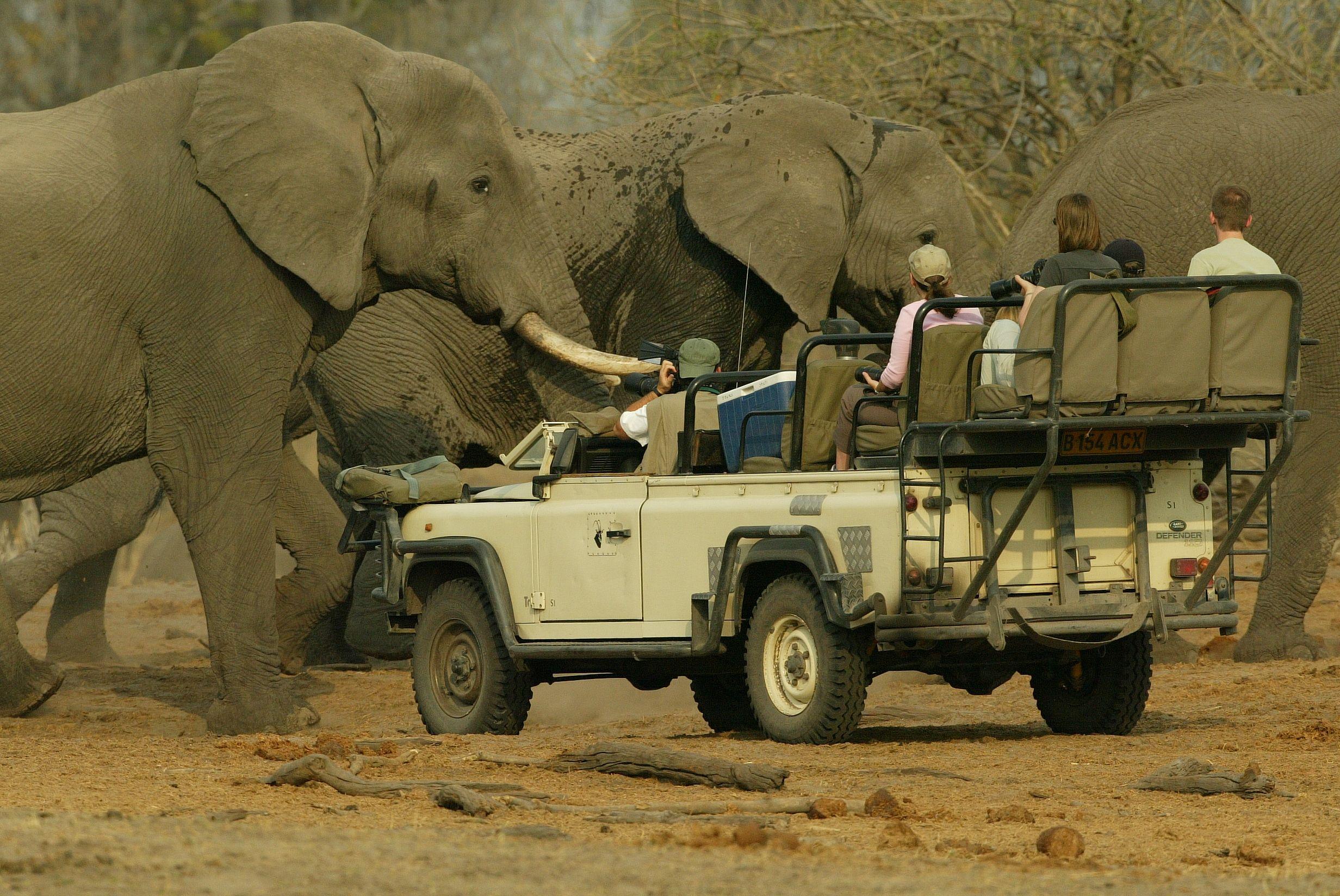 Safari Land Rovers Pinterest