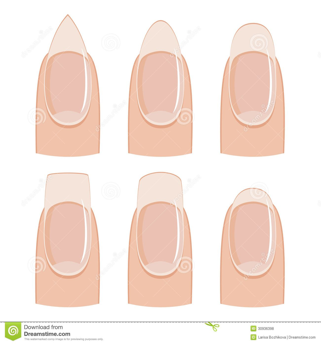 Nail Shapes Manicure Shape White Background