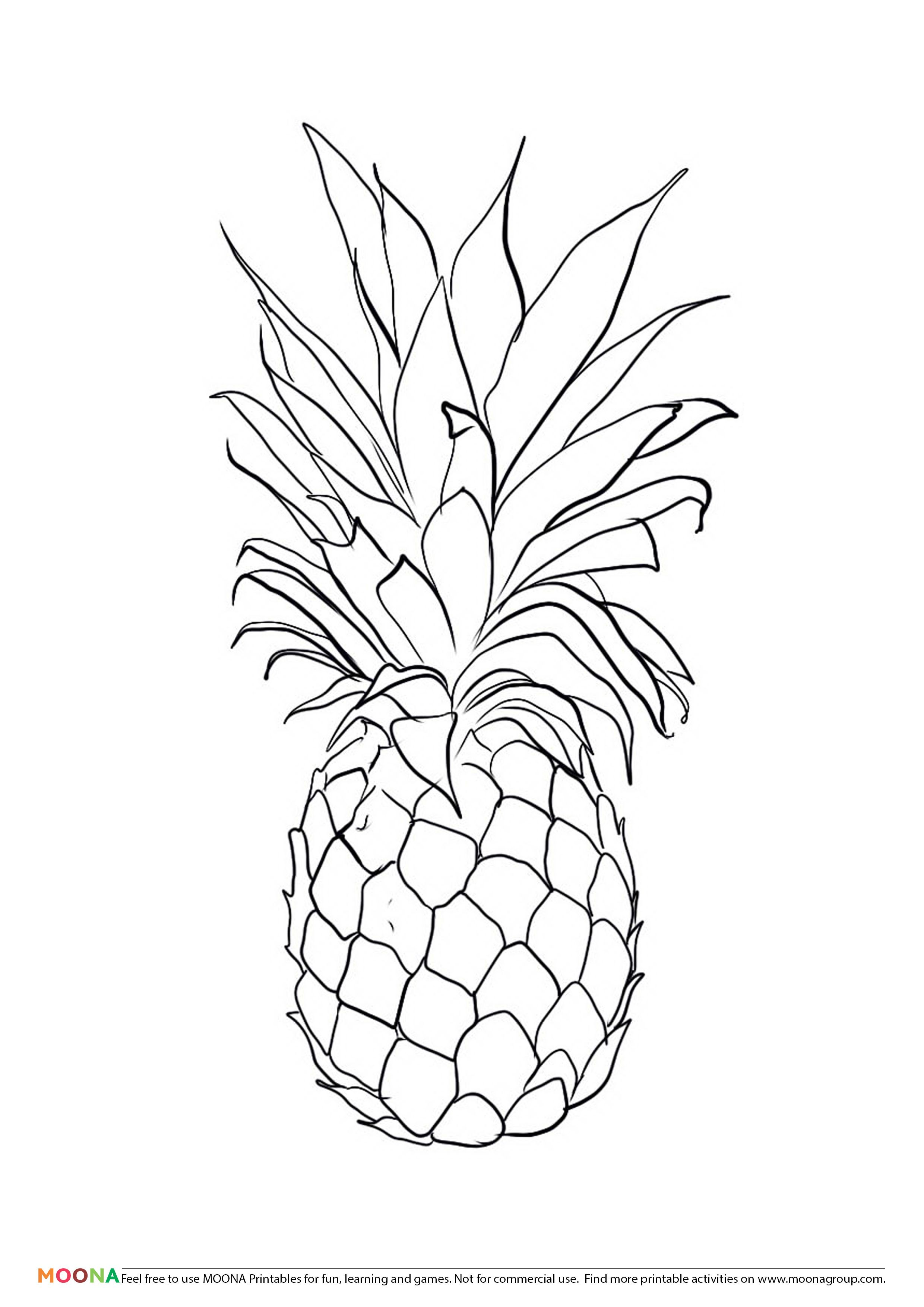 Free Printable Coloring Pages for toddlers and preschoolers pineapple. Click