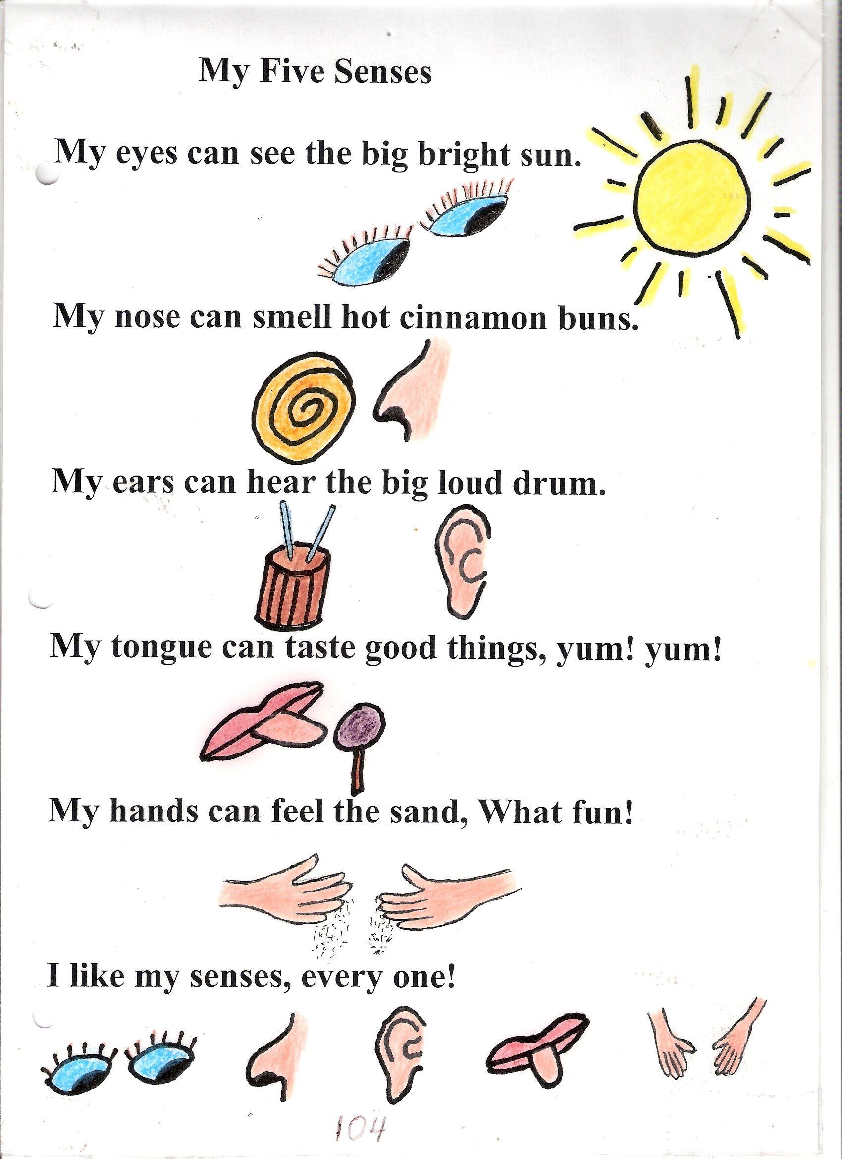 Five Senses Poems