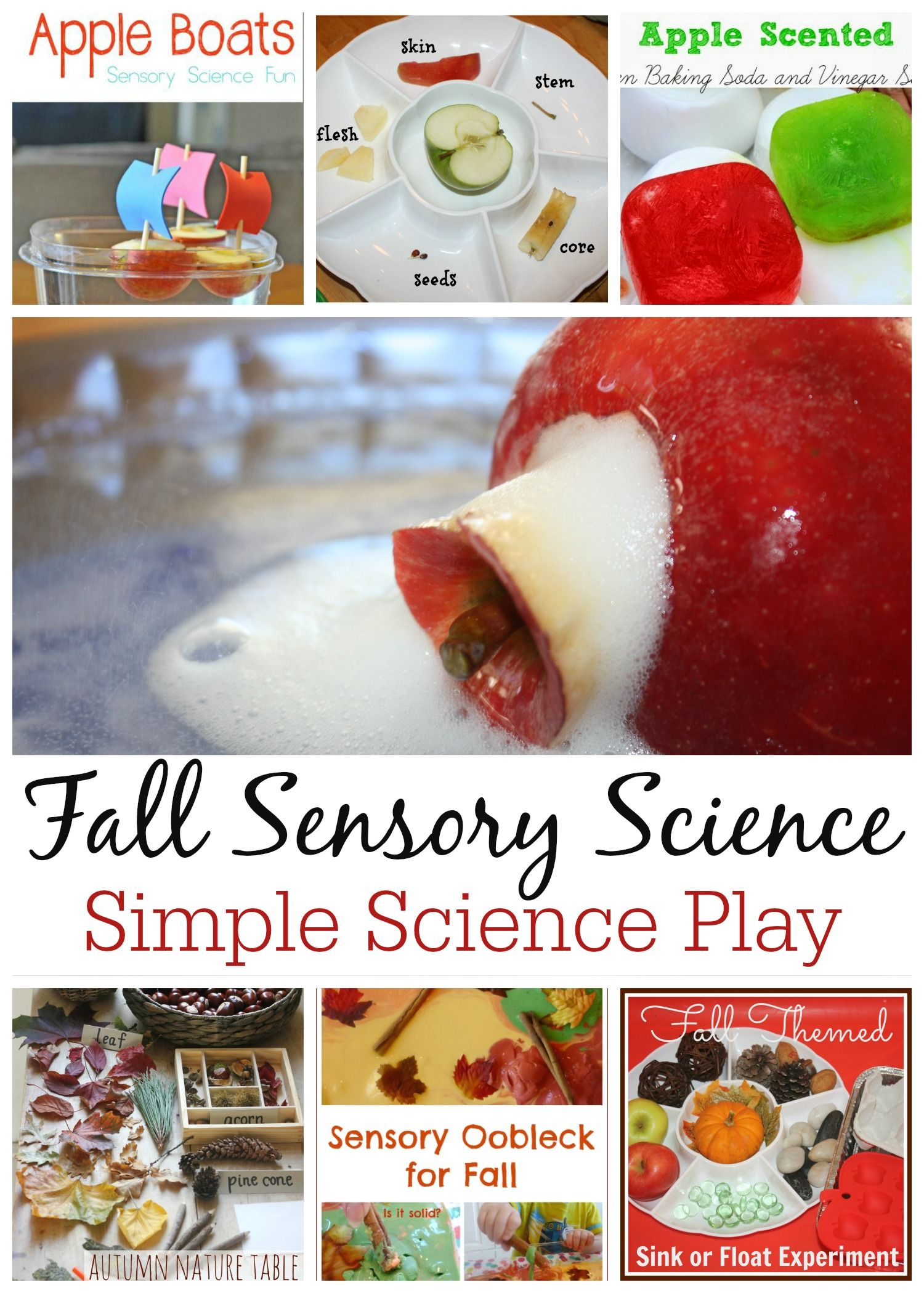 Fall Science Experiments And Science Activities For Kids