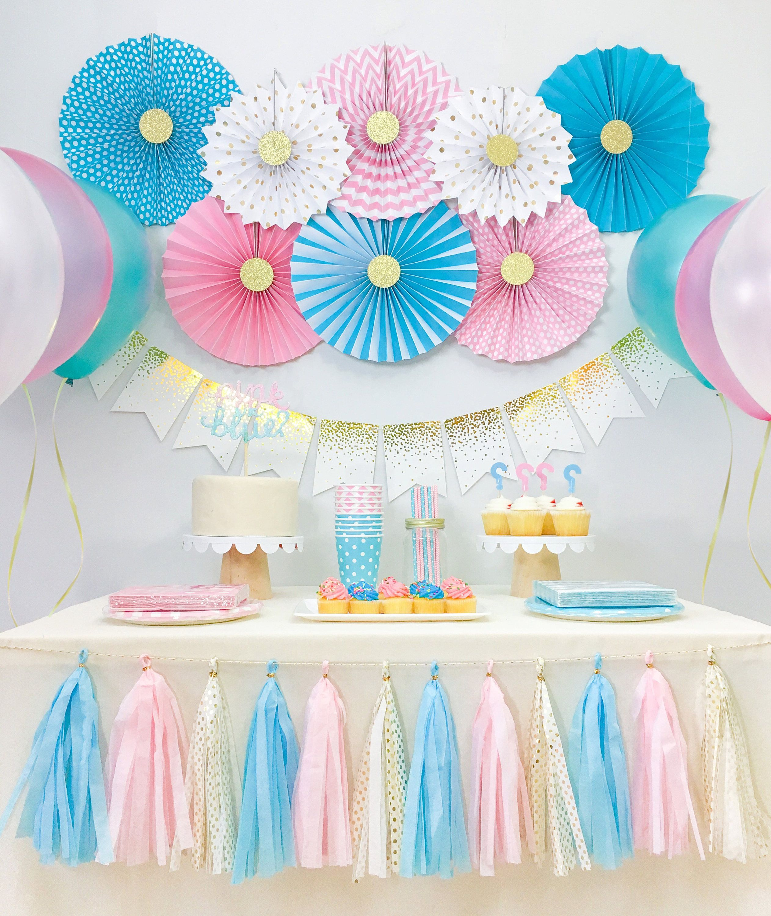 Gender Reveal Baby Shower Decorations Boy And Girl Twins