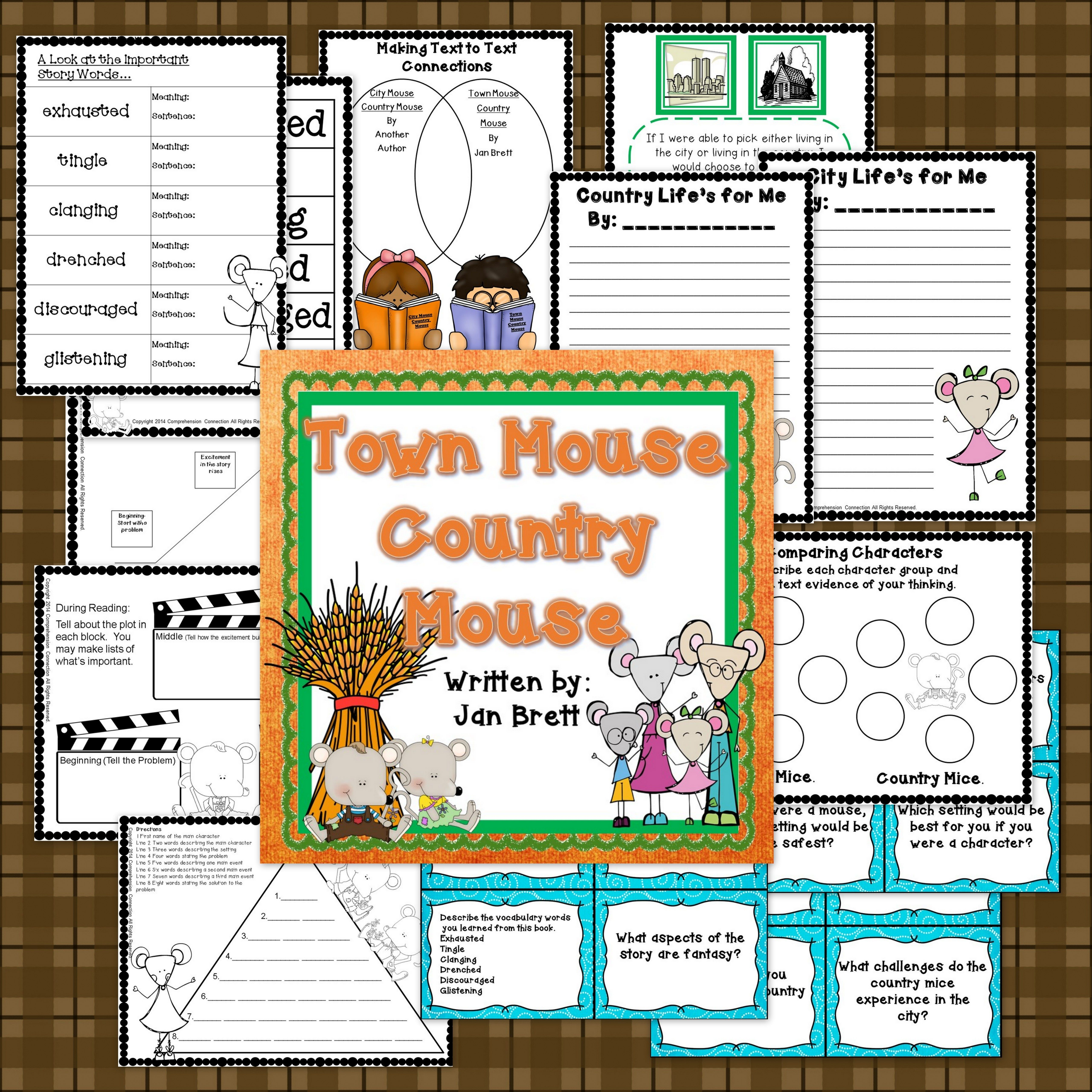 Town Mouse And Country Mouse Comprehension Activities In