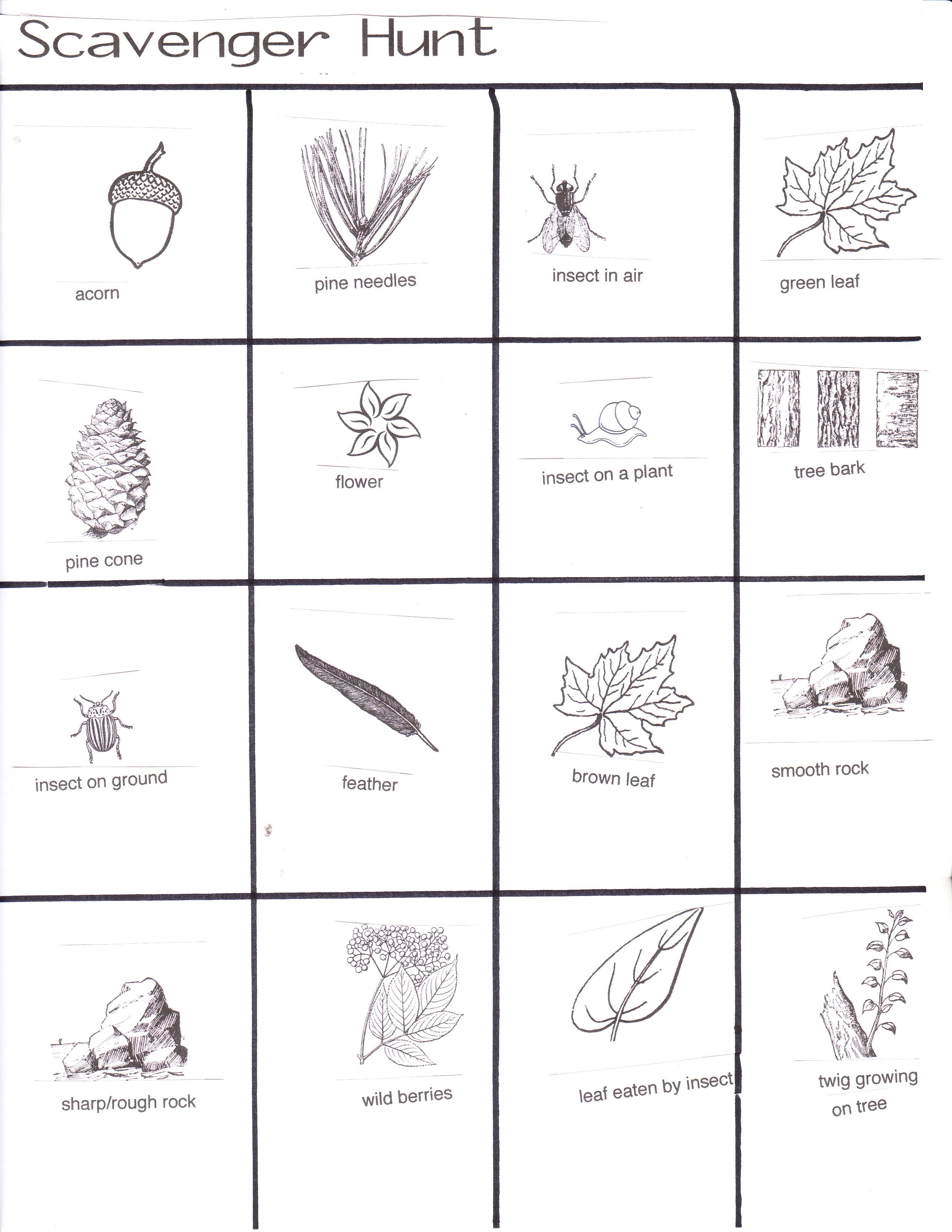 Nature Walk Scavenger Hunt This Would Be A Good Camping Game Preschool