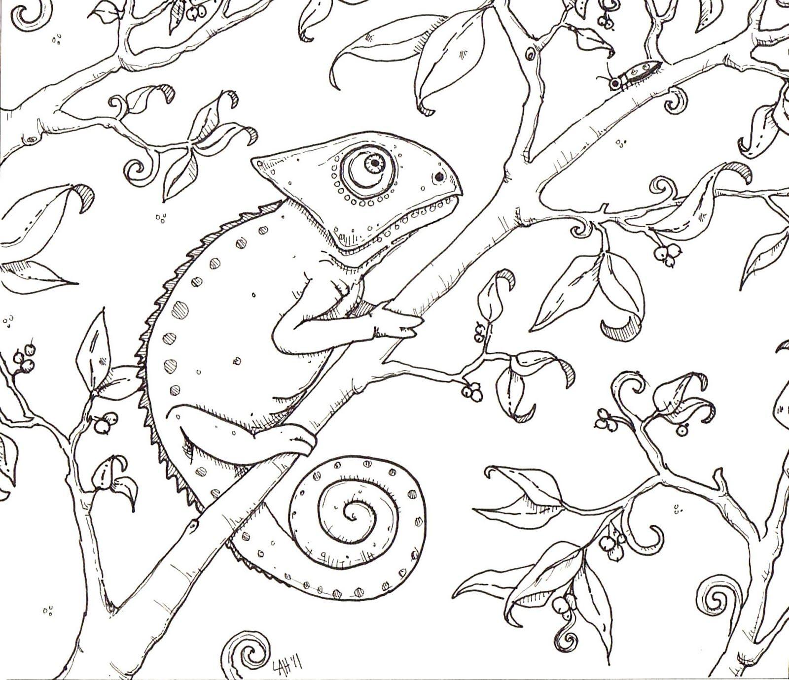 Hedgie's Desk Chameleon Coloring Page Fonts Pinterest