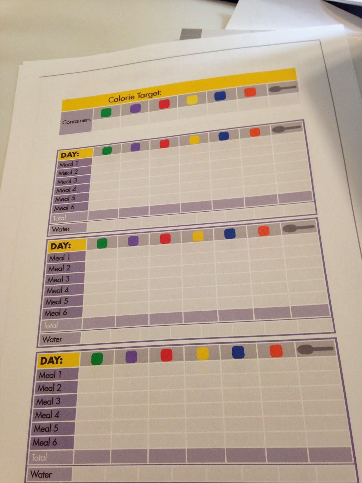 21 Day Fix Tracking Sheets Laniemitro