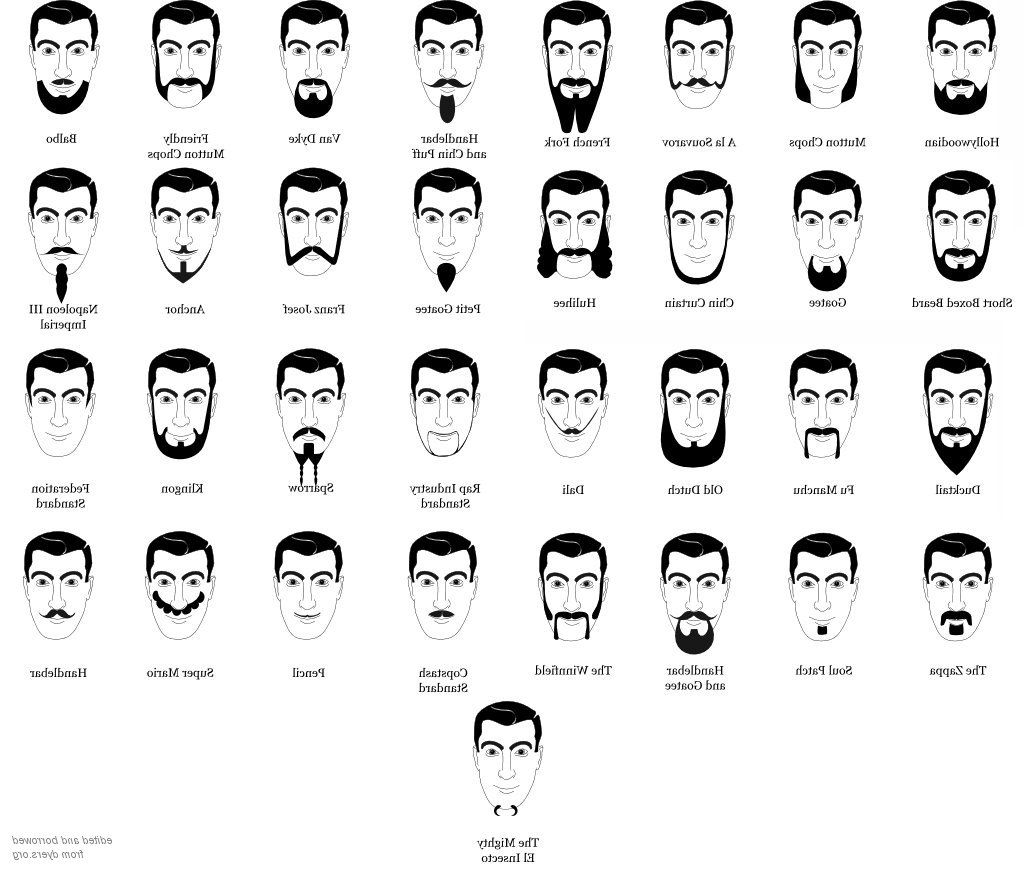 Peachy Hair Type Worksheet Printable Worksheets And Activities For Schematic Wiring Diagrams Amerangerunnerswayorg