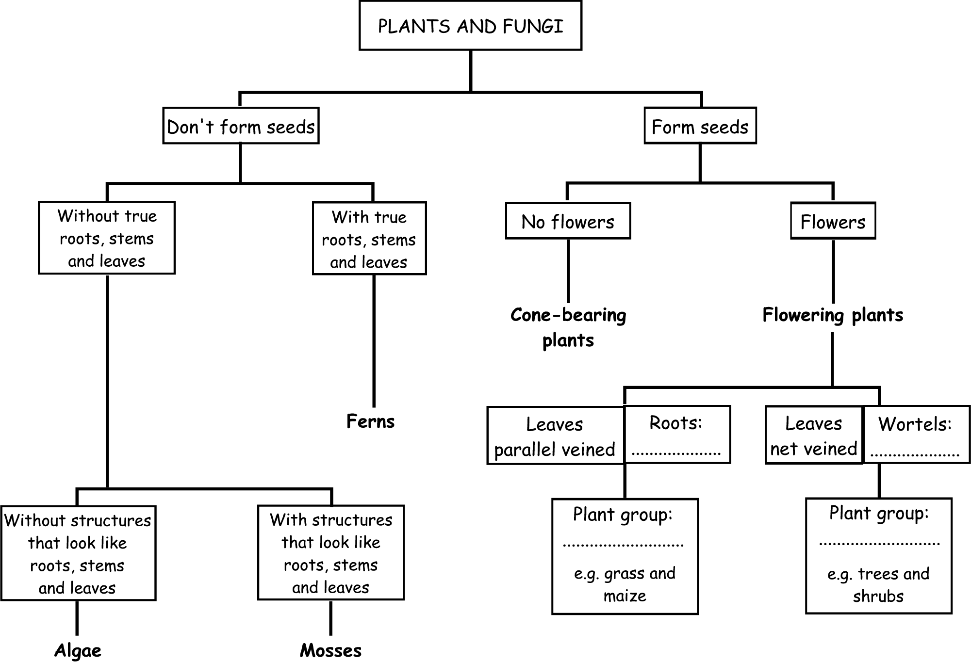 Classification System Chart